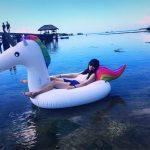 """Hình ảnh nguồn hàng Phao bơi hình thú độc đáo dành cho tiệc """"nước"""" và du lịch biển giá sỉ quảng châu taobao 1688 trung quốc về TpHCM"""