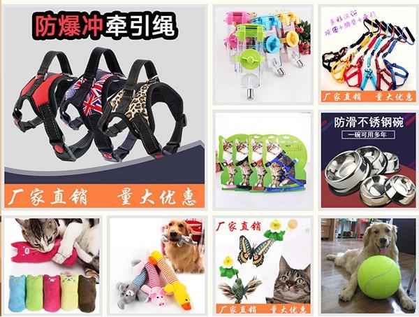 Hình ảnh nguồn hàng Nơi bán sỉ phụ kiện thú cưng đẹp và rẻ nhất giá sỉ quảng châu taobao 1688 trung quốc về TpHCM